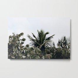 tropical xxii Metal Print