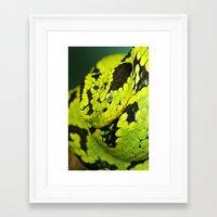 snake Framed Art Prints featuring SNAKE by Ylenia Pizzetti