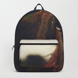 Horse photography, high quality, nature landscape fine art print Backpack