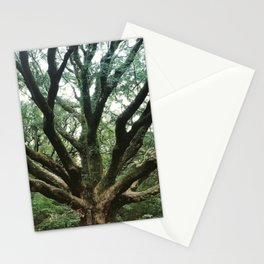 Age and Wisdom Stationery Cards