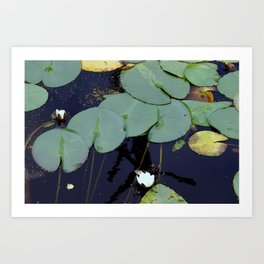 vaster surface Art Print