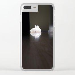 Cat in Sun Spot Clear iPhone Case