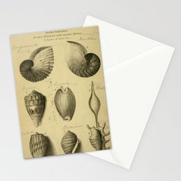 Vintage Scientific Illustration - Cabinet of Nature and Philosophy (1833) - Testacea, Univalves Stationery Cards