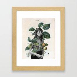 Jane 3 Framed Art Print