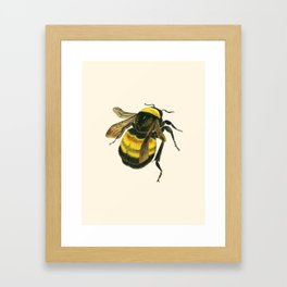 Vintage Scientific Bee Framed Art Print