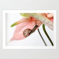 snail Art Prints featuring Snail by Ellen van Deelen