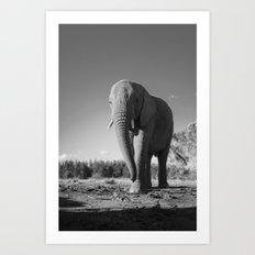 Sally the Elephant Art Print