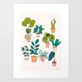 House Plants illustration Art Print