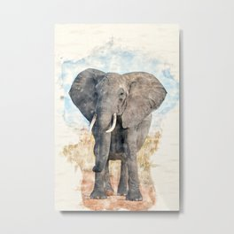African Bush Elephant Watercolor Metal Print