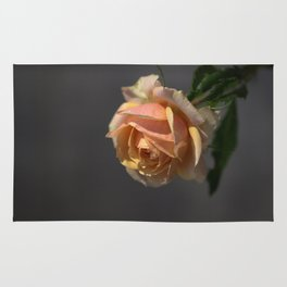 Vista House Rose Rug