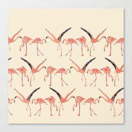 vanilla flamingos Canvas Print