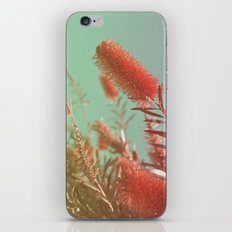 Red Fluffy Plant iPhone Skin