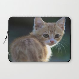 Gatto Rosso - Red Cat Laptop Sleeve