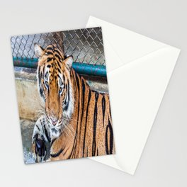 Tiger, My Bottom is Not Made Out of Springs Stationery Cards