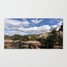 Fenceline to Skyline Canvas Print