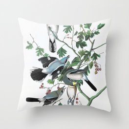 TitleGreat American Shrike Or Butcher Bird - John James Audubon Throw Pillow