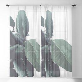 Ficus Elastica #18 #White #foliage #decor #art #society6 Sheer Curtain