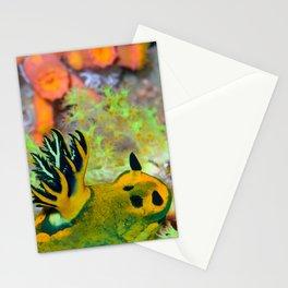 Nembrotha Nudibranch Stationery Cards