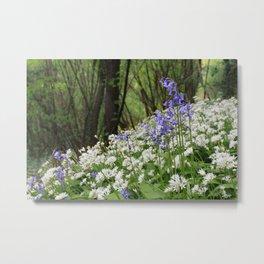 Bluebells and Wild Garlic Metal Print