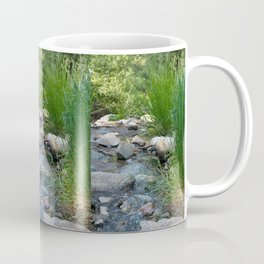 Stream in Mt Lemmon Coffee Mug