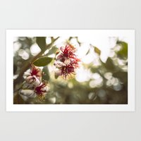 botanical Art Prints featuring Botanical  by dibec