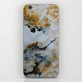 Merited Earth iPhone Skin