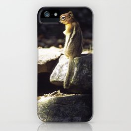 Inquisitive by Nature iPhone Case