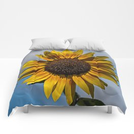 Sun's Flower Comforters
