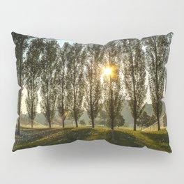 Penn State Arboretum Pillow Sham