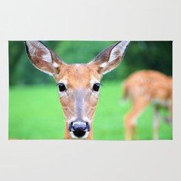 Big Brown Eyes   Deer Rug