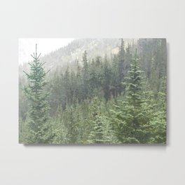 Green Mountain Metal Print