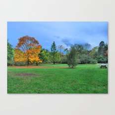 Autumn Upon Us Canvas Print