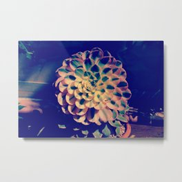 Nature´s mathematic Metal Print