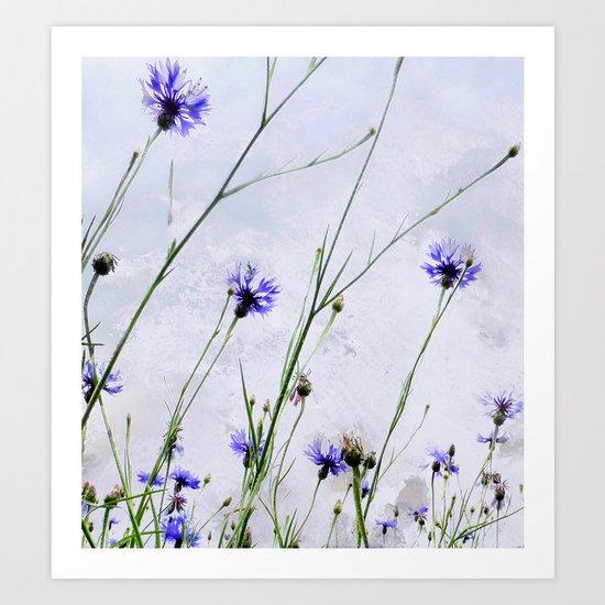 Cornflowers blue II Art Print