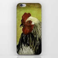 rooster iPhone & iPod Skins featuring Rooster by LudaNayvelt
