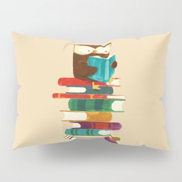 Owl Reading Rainbow Pillow Sham