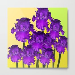 Yellows Contemporary Purple Iris Garden Art Metal Print