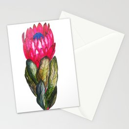 Protea dark pink Stationery Cards