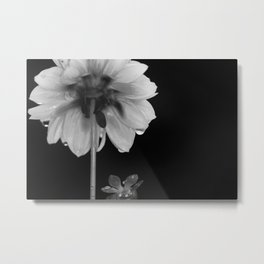 Growing Flower Metal Print