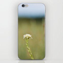 Flower in the Field iPhone Skin