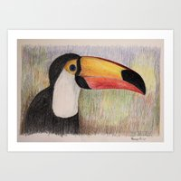 toucan Art Prints featuring Toucan by Lyubov Fonareva