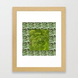 COLLAGE GRAY-GREEN  SUCCULENTS  MODERN DESIGN Framed Art Print