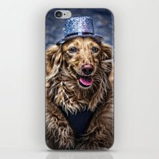 Party Dog iPhone & iPod Skin