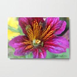 Colorful Flower Metal Print