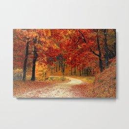 Autumn Landscape 1 | Paysage d'Automne 1 Metal Print