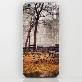 bryant park iPhone Skin
