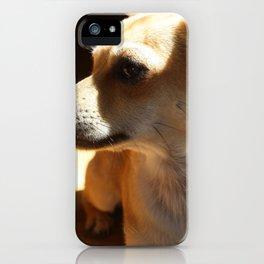 Mr. Intelligent  iPhone Case