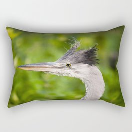 Young orphaned Ardea cinerea the grey heron Rectangular Pillow