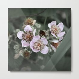Delicate like you and me Metal Print