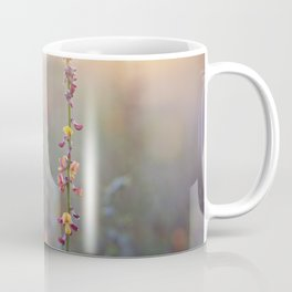 Wildflowers at Sunse Coffee Mug